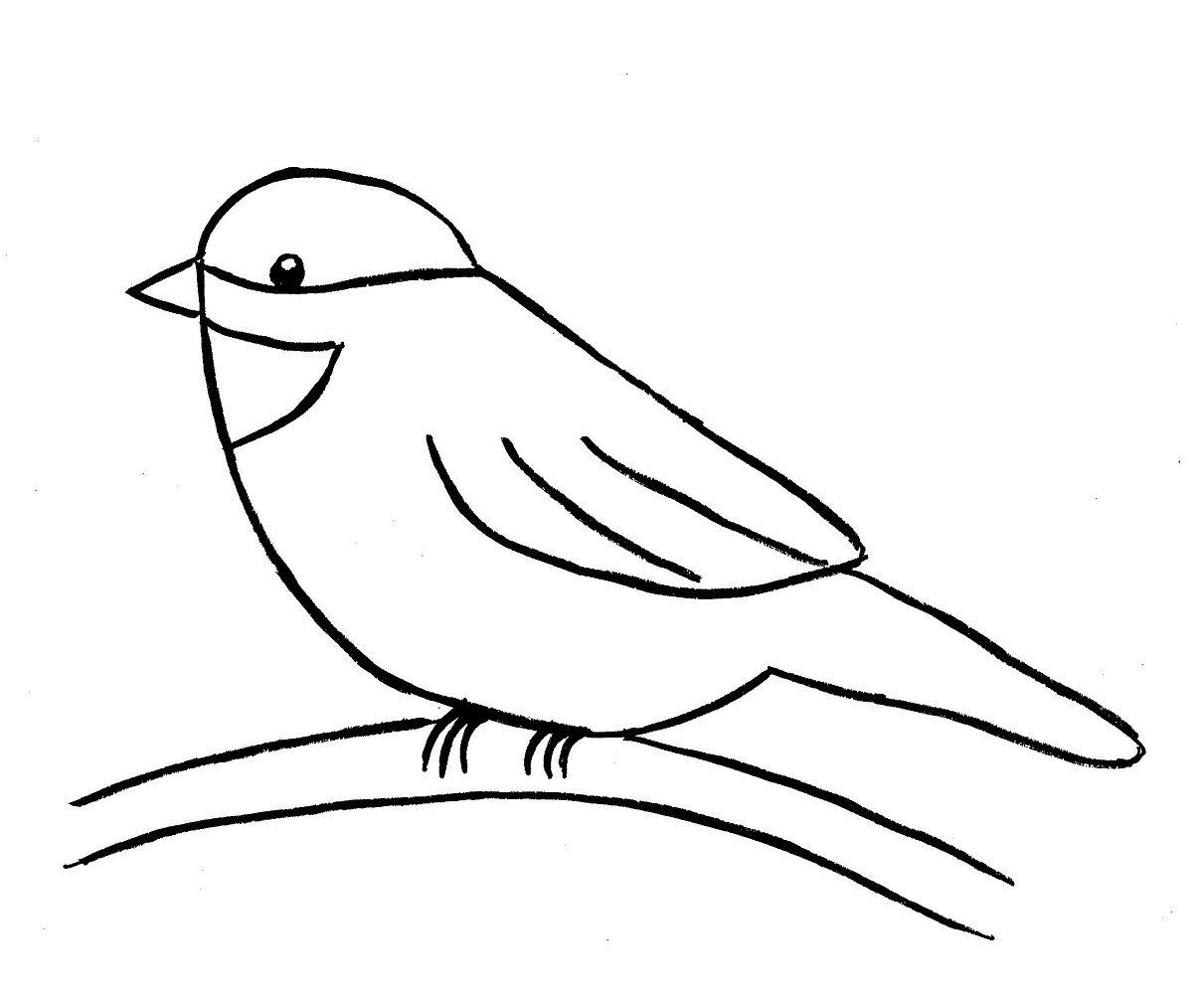 1211x1002 How To Draw A Bird Step By Step Easy With Pictures Drawing Step