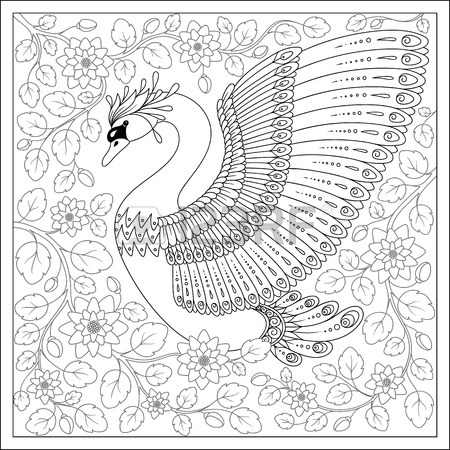 450x450 Swan Drawing Stock Photos. Royalty Free Business Images