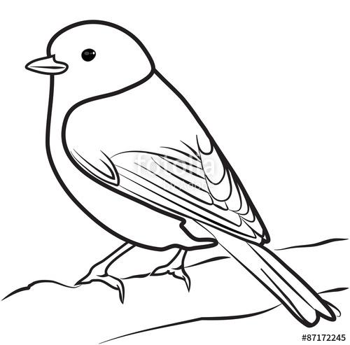 500x493 Image Result For Bird Outline Bird Outline Bird