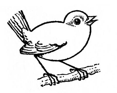 how to draw a sparrow bird step by step