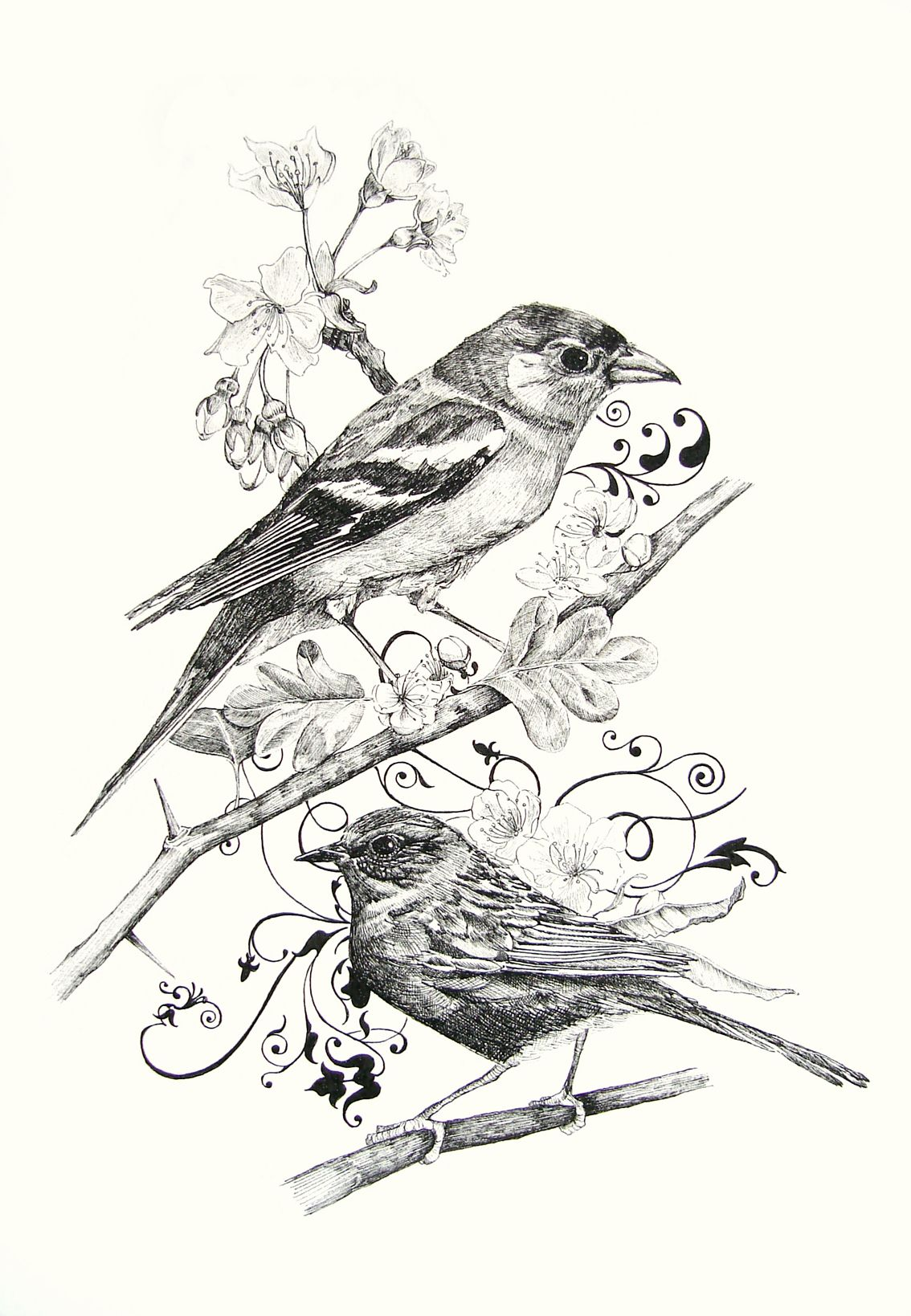 1134x1639 Birds + Filigree