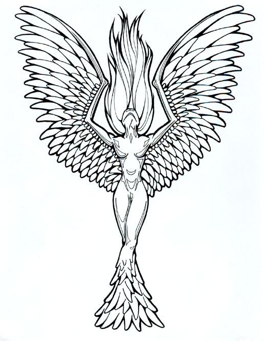 516x665 Collection Of Tumblr Phoenix Tattoo Photo