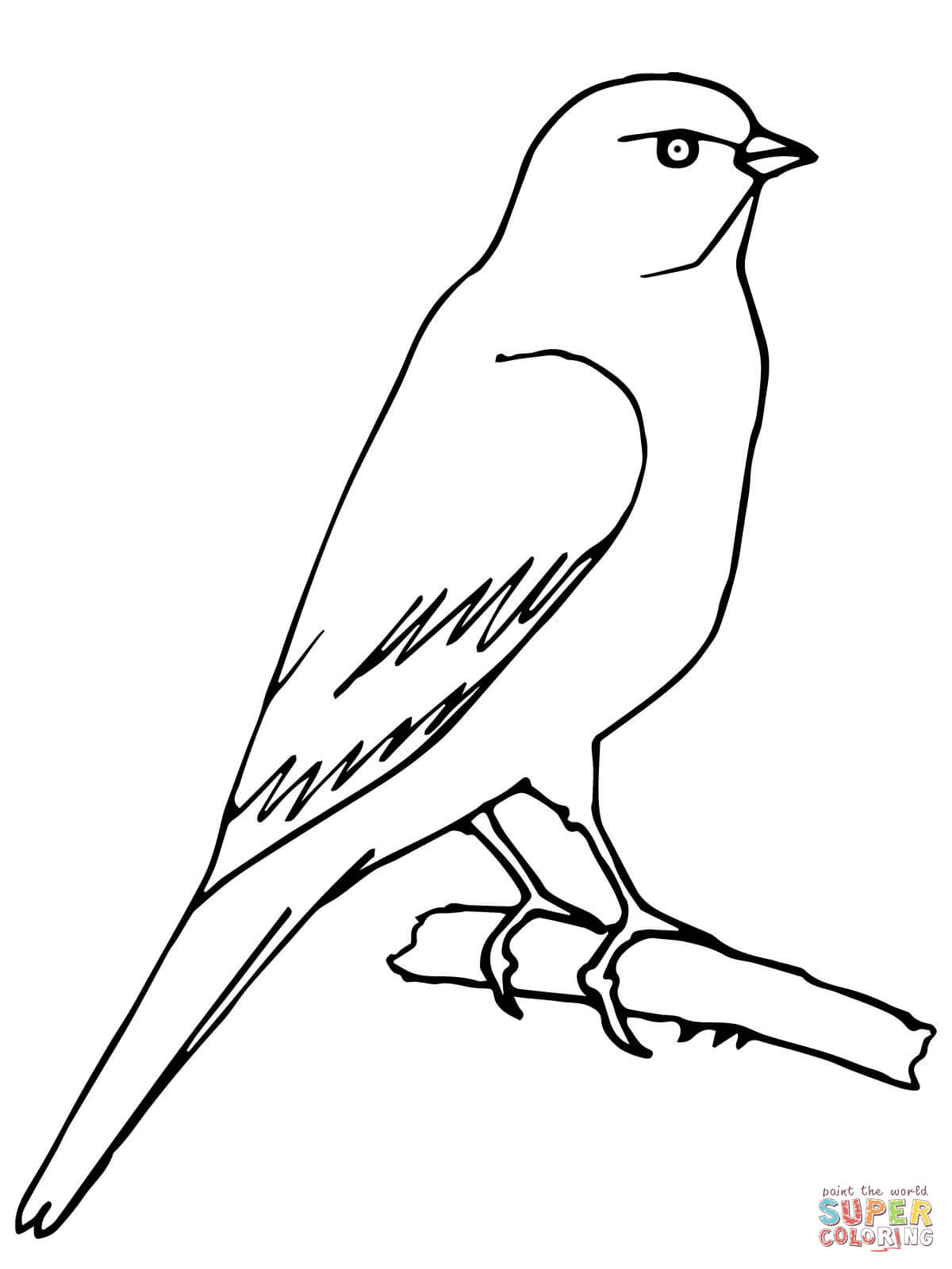 1200x1600 Perched Canary Coloring Page Free Printable Coloring Pages