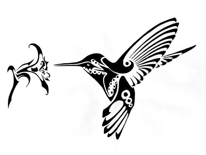 800x604 Tumblr Tribal Hummingbird Tattoo 2015