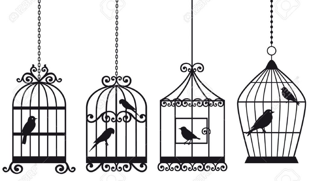 1024x600 Bird In Cage Drawing Bird Cages Drawings Vintage Bird Cage Drawing