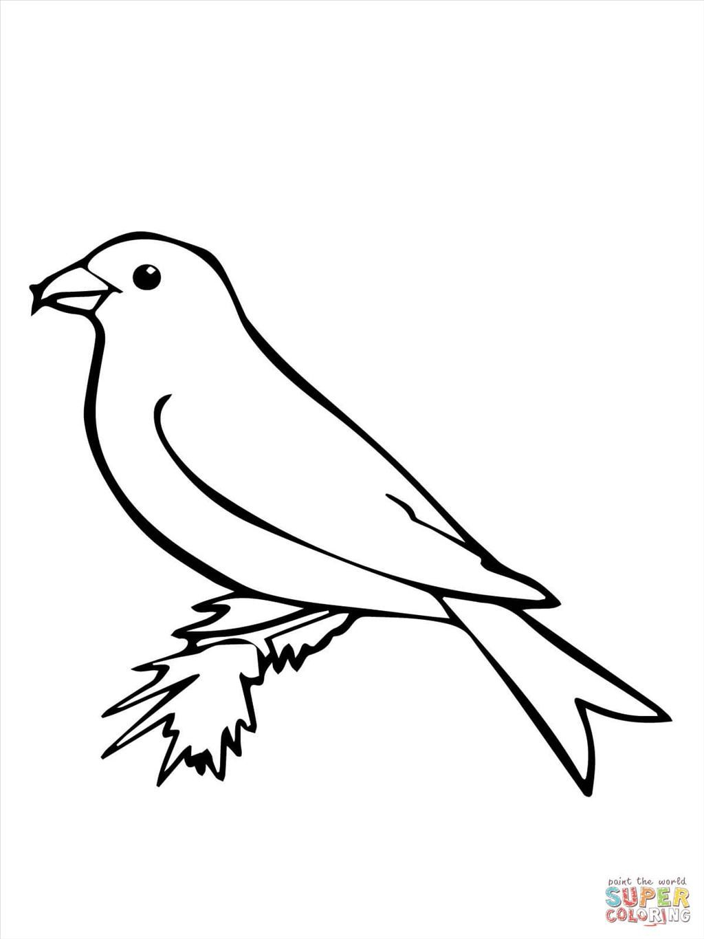 1024x1365 Good Bird Coloring Page Wallpapers Unknown Resolutions High