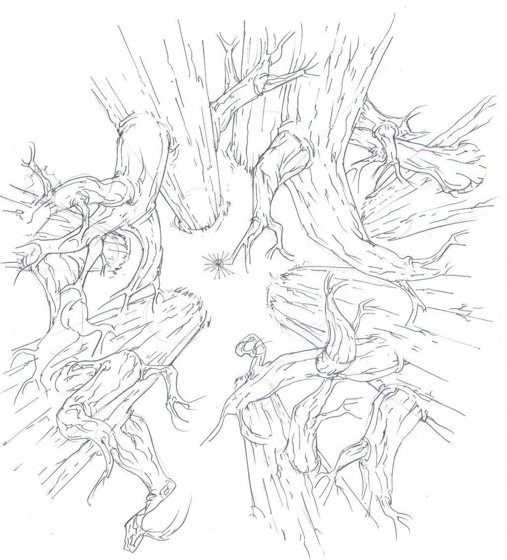 1024x1131 Birds Eye Dead Forest Trees! By Protossrules