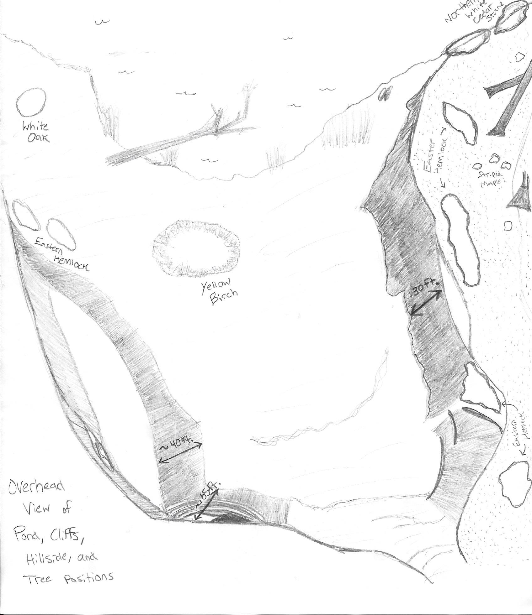 1696x1963 Bird's Eye View Of Cliffs, Cove, Pond, And Hemlock Point Sea