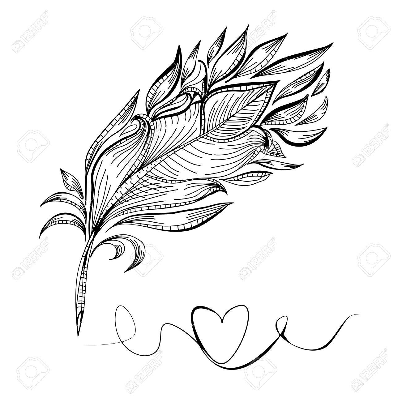 1300x1300 Drawing A Doodle Bird Feather, Line Vector Illustration Royalty