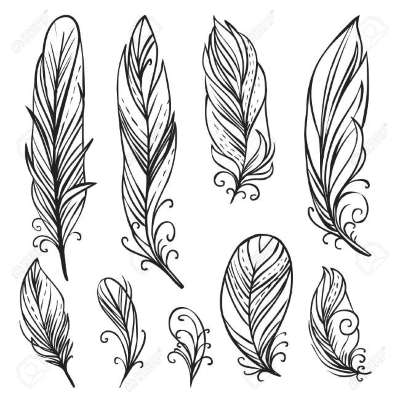 1300x1300 Hand Drawn Bird Feathers Royalty Free Cliparts, Vectors, And Stock