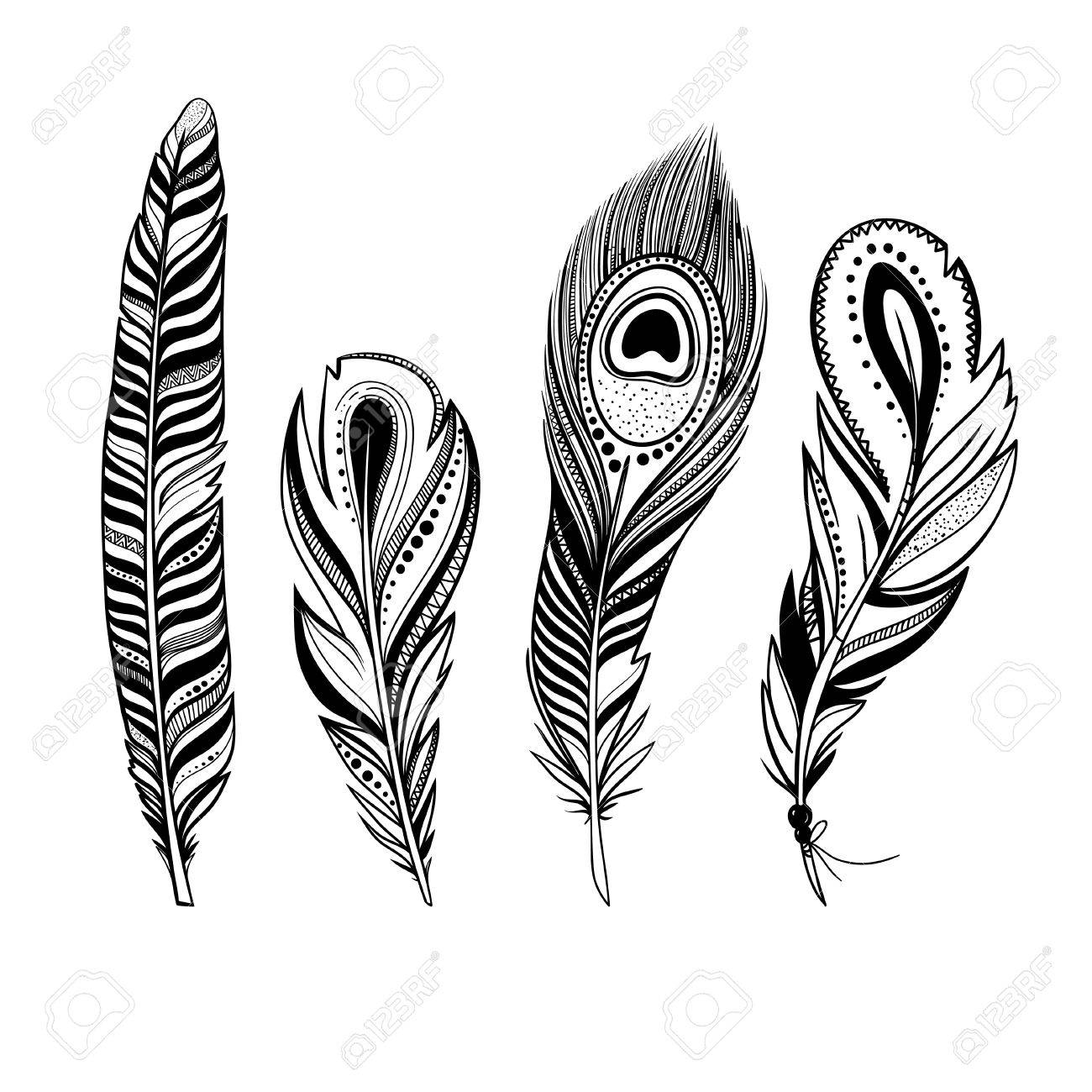 Bird Feathers Drawing At GetDrawings