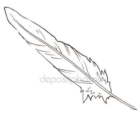 450x450 Watercolor Bird Feather From Wing Isolated. Stock Photo