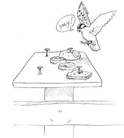 400x445 Homemade Bird Feeders Wilderness Awareness School