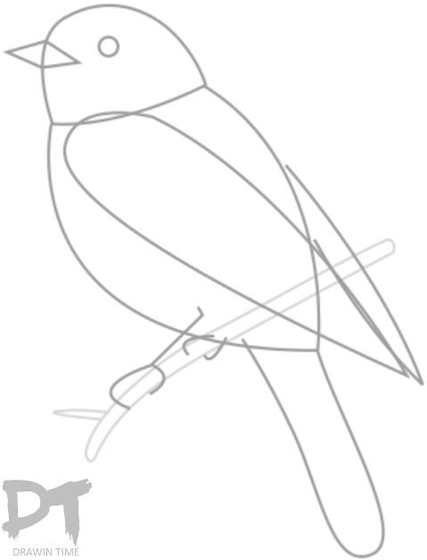 479x628 How To Draw A Bird Drawintime