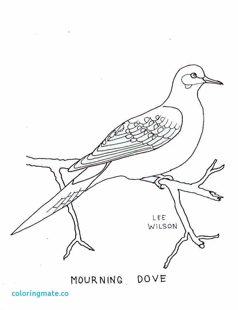814x1062 Printable Coloring Pages Of Birds Lovely Free Bird Feeder Coloring