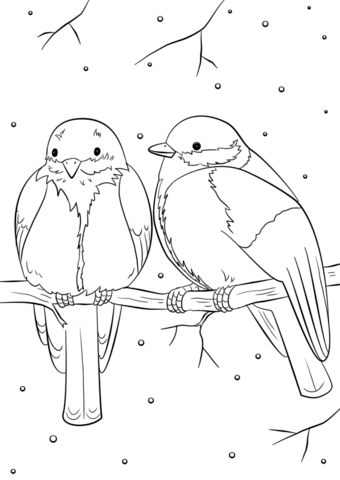 340x480 Winter Birds Coloring Page Free Printable Pages