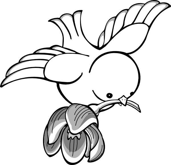 Bird Flight Drawing