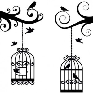 300x300 Bird Flying From Bird Cage Coloring Pages Bird Flying From Bird