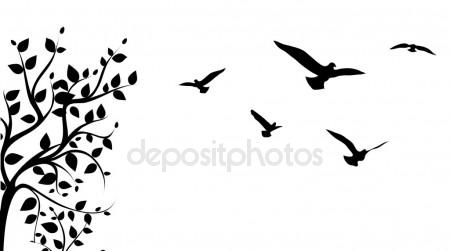 450x251 Birds Out Of Cages. Spring Birds Flying On The Branch. Vector