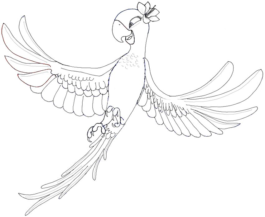 850x697 How To Draw Jewel From Rio And Rio 2 In Easy Steps Drawing