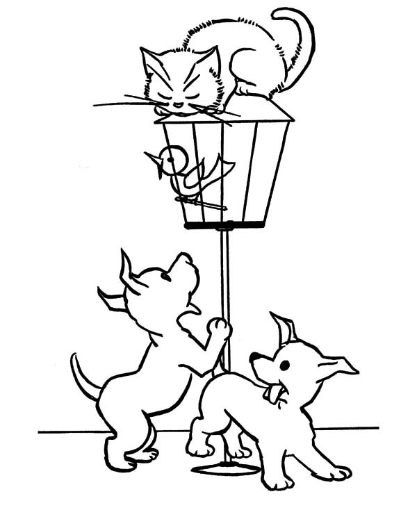 600x734 Little Bird Locked In Bird Cage Coloring Pages Best Place To Color