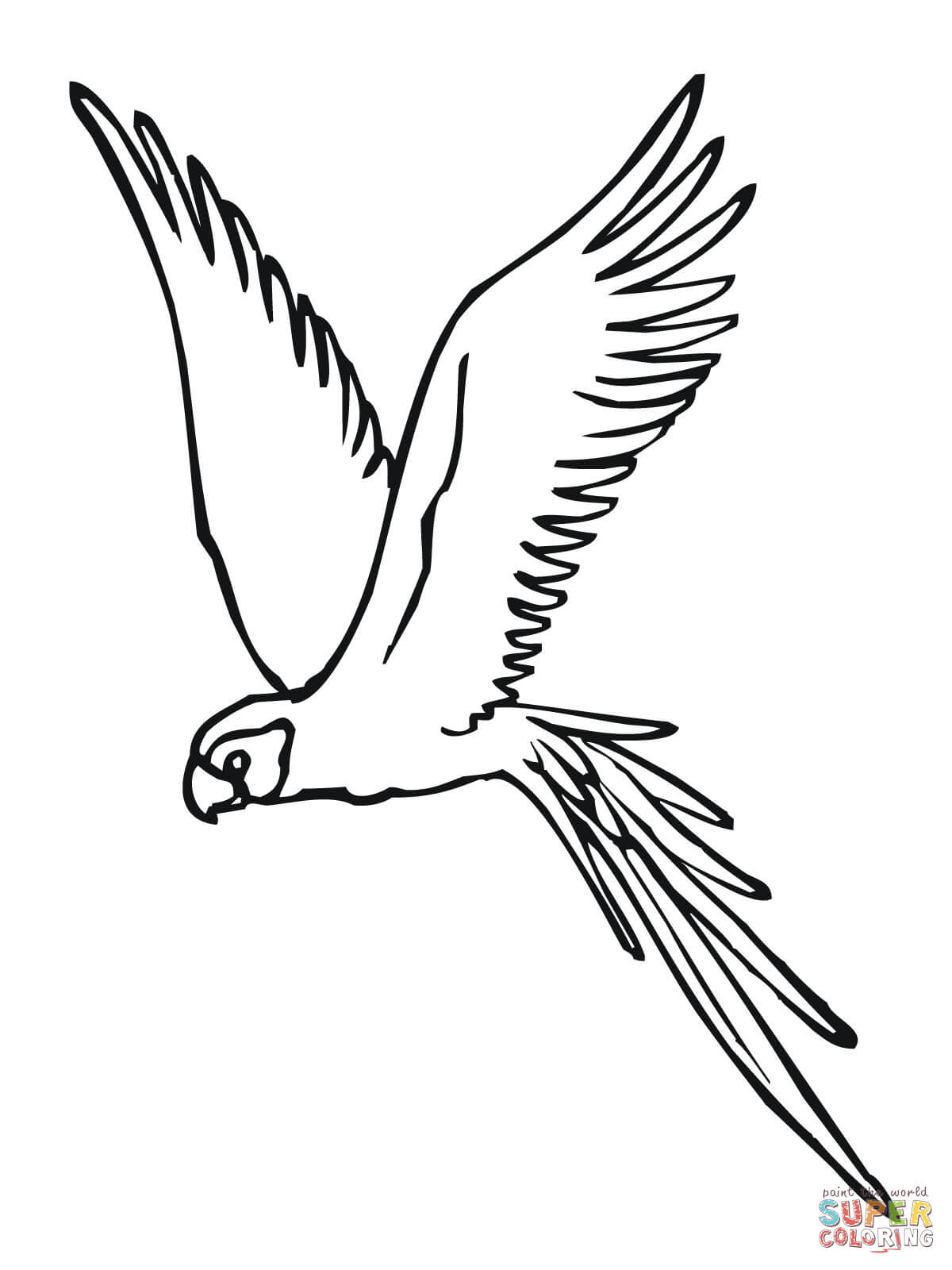 Bird Flying Out Of Cage Drawing