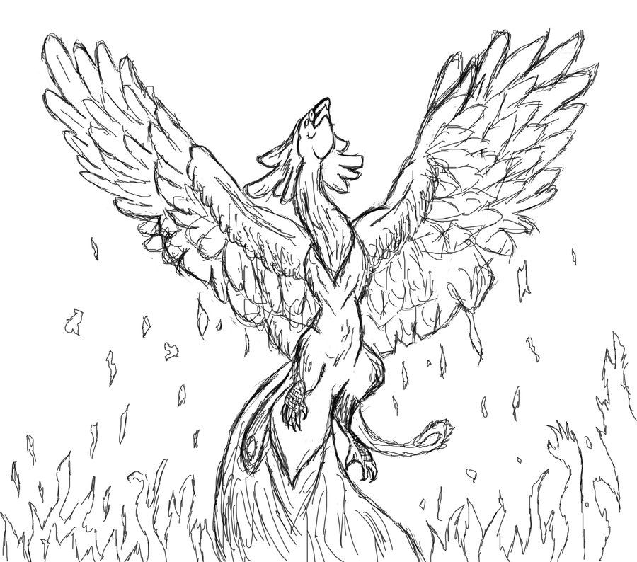 900x794 Unfinished Drawing Of The Phoenix Bird By Milliemonster