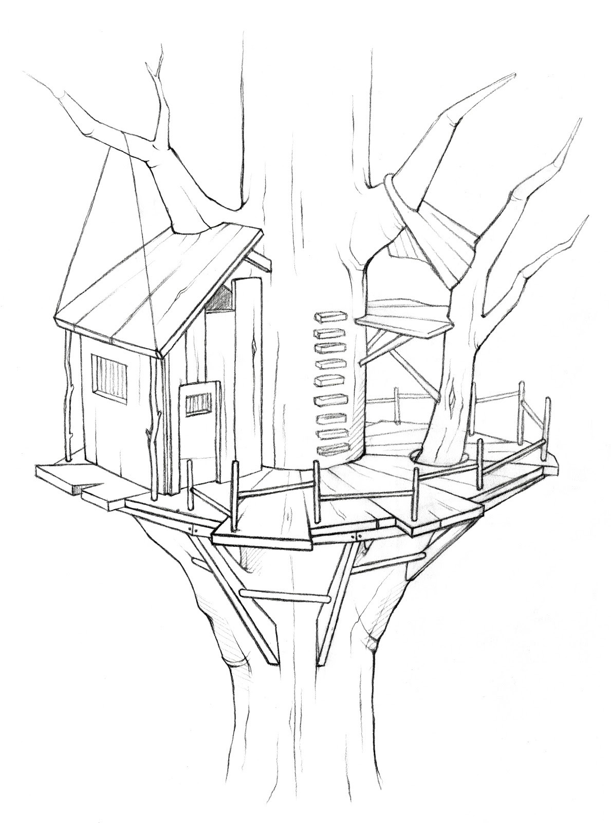 1189x1600 Free Coloring Pages Bird Houses Copy Tree House