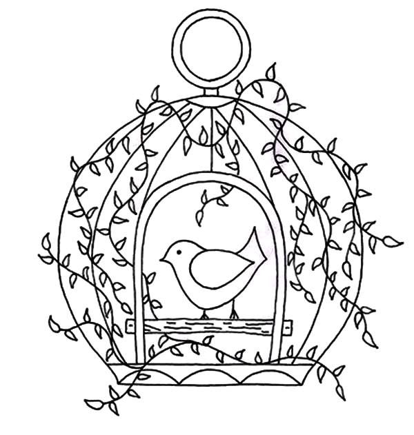 600x631 Bird Cage, Bird Cage Door Open Coloring Pages Bird Cage