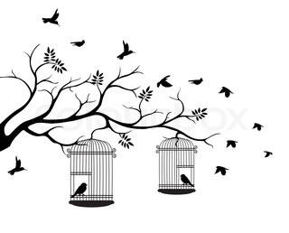 320x258 Illustration Flying Birds With A Love For The Bird In The Cage