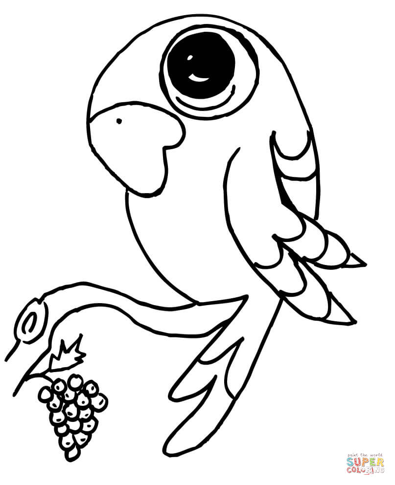 807x992 Parrots Coloring Pages Free Coloring Pages