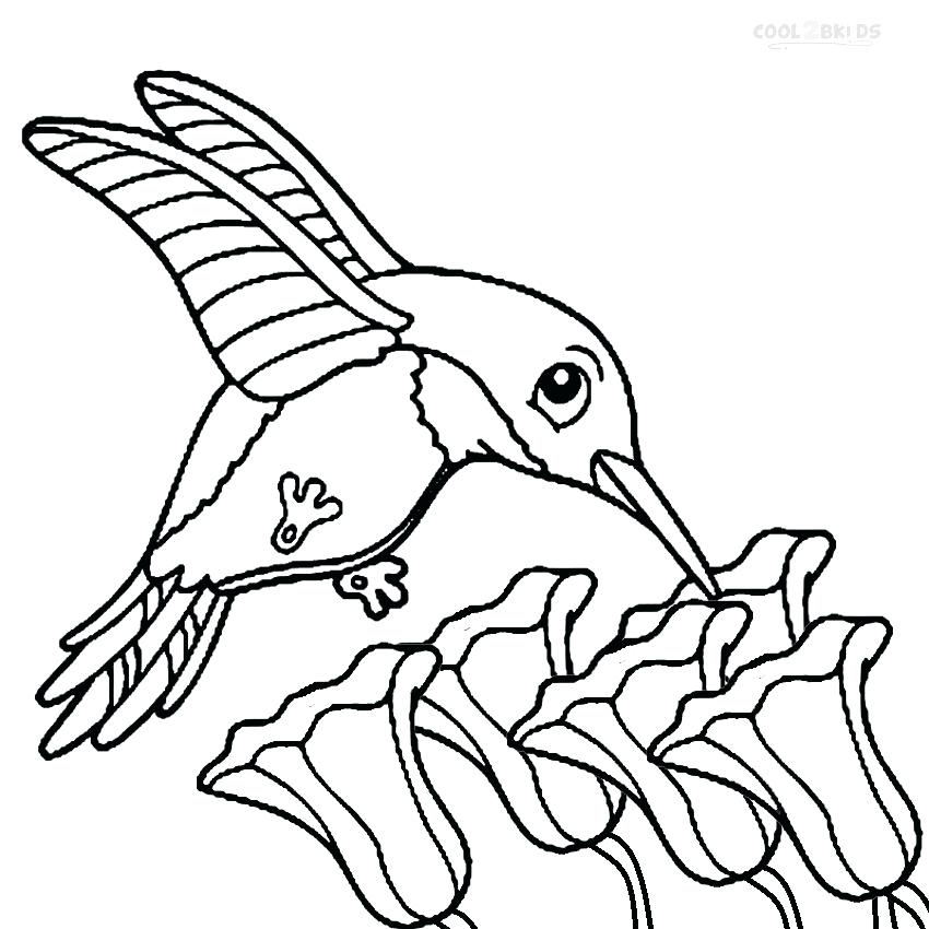 850x850 Coloring Page Bird
