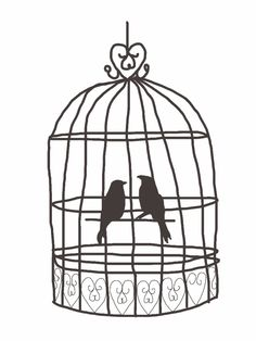 236x314 Bird In A Cage