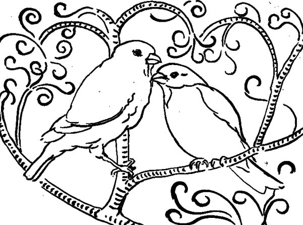 600x446 Love Birds Perching On Tree Coloring Pages Batch