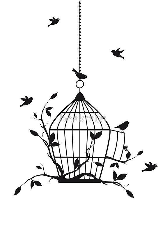 560x800 Free Birds With Open Birdcage Posters By Beakraus Redbubble