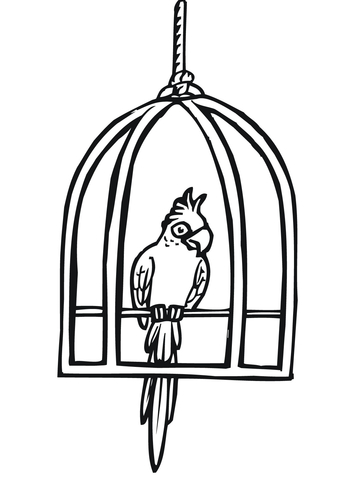 360x480 Parrot In A Cage Coloring Page Free Printable Coloring Pages