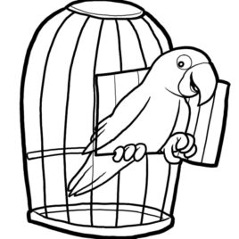 268x268 White Vintage Bird Cage