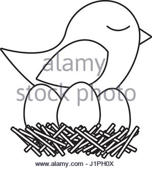 300x333 Monochrome Silhouette Of Bird In Nest With Eggs In Closeup Stock