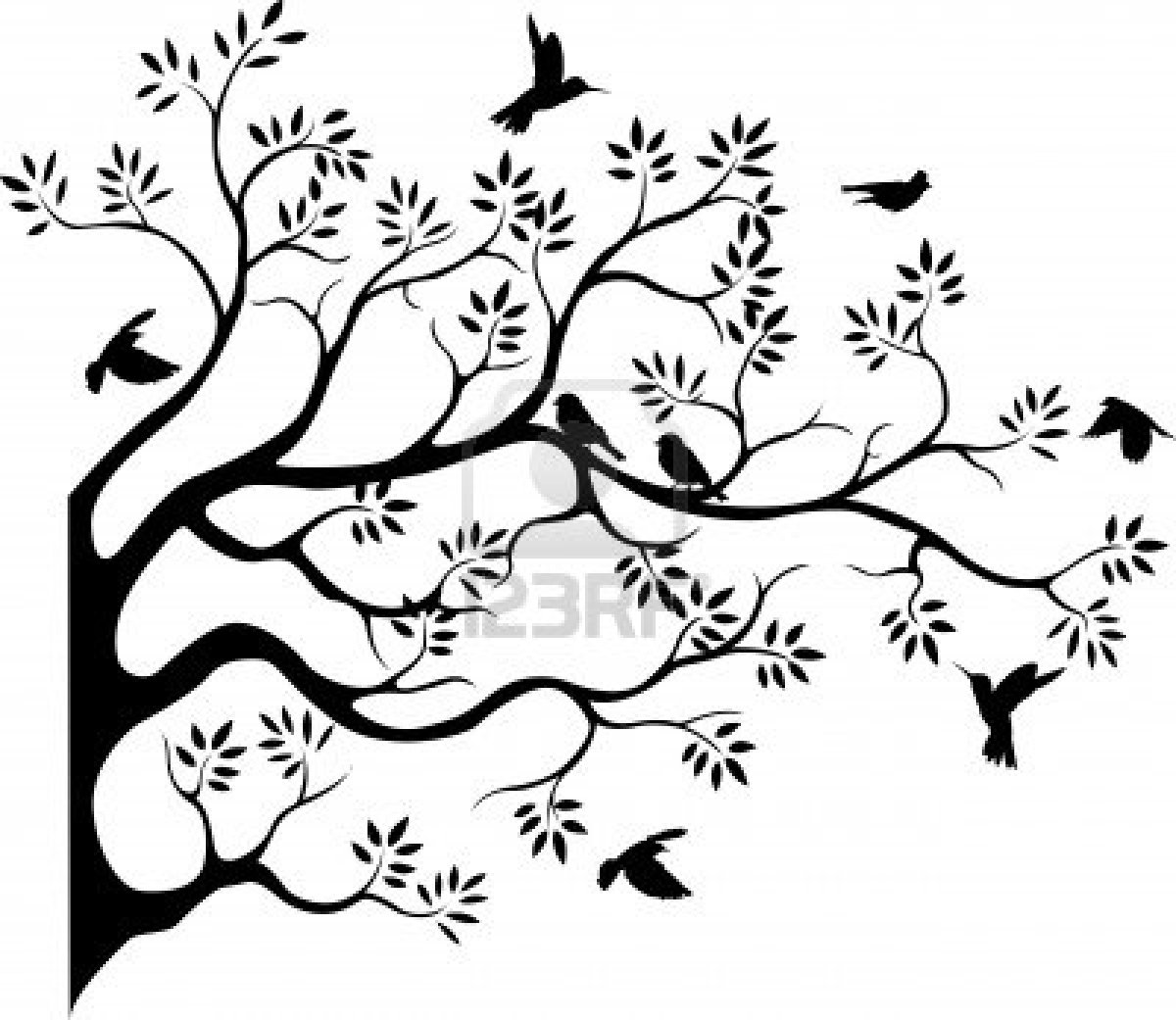 Bird In Tree Drawing
