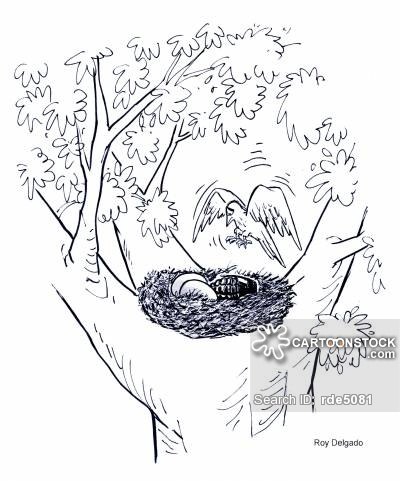 400x482 Cartoon Bird Nest In Tree
