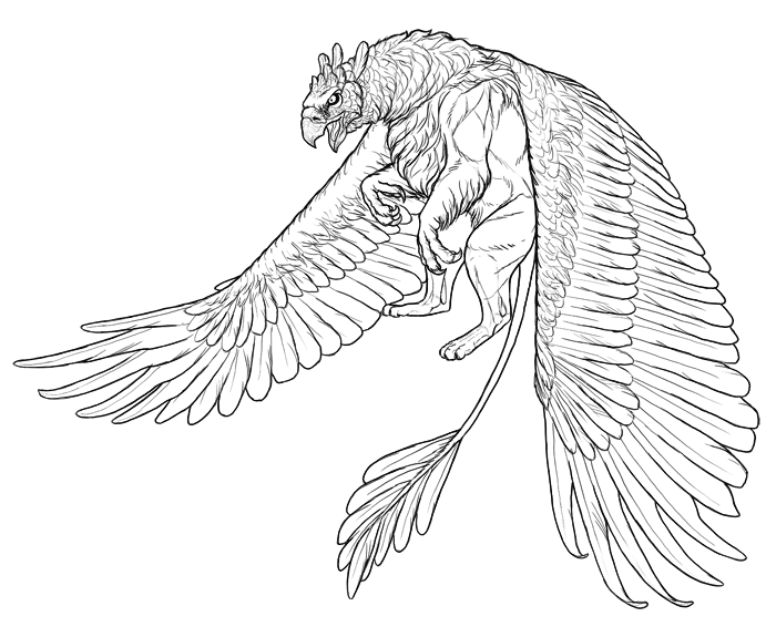 700x575 How To Draw A Griffin