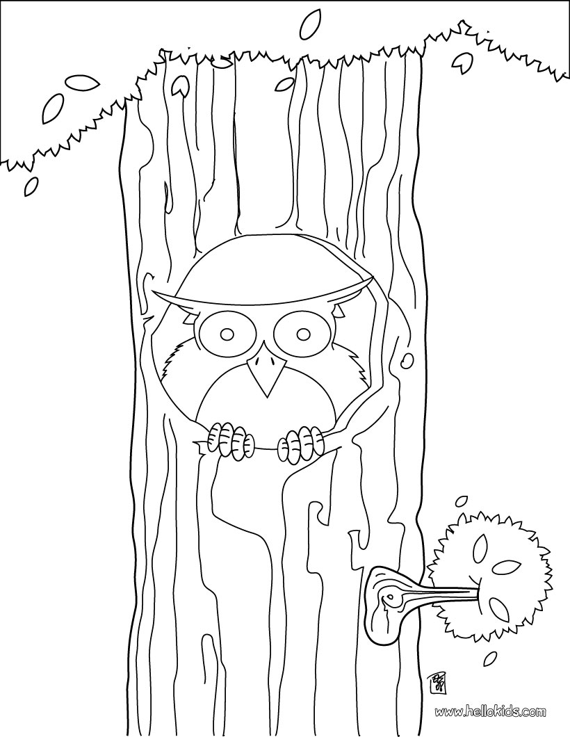 820x1060 Owl Sitting On The Tree Coloring Pages