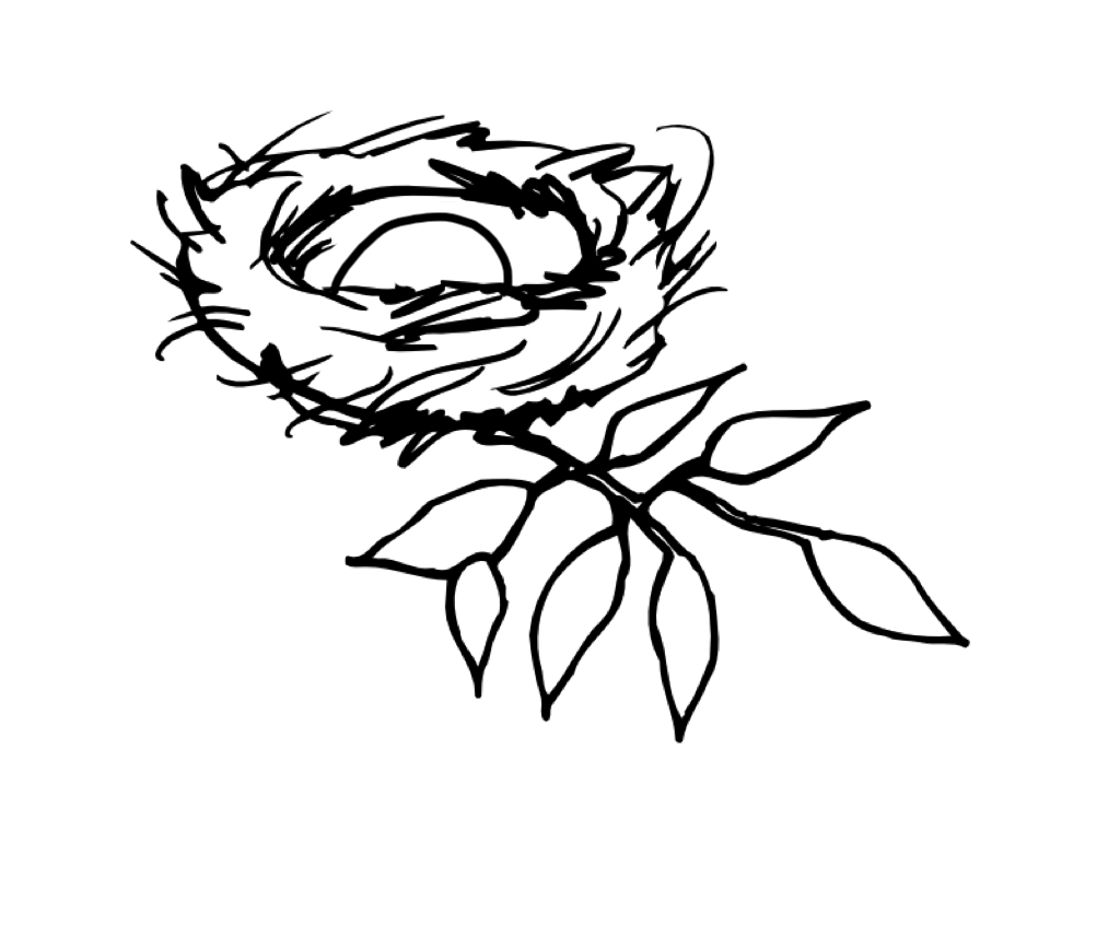 1024x856 Nest Drawing Png Transparent Nest Drawing.png Images. Pluspng