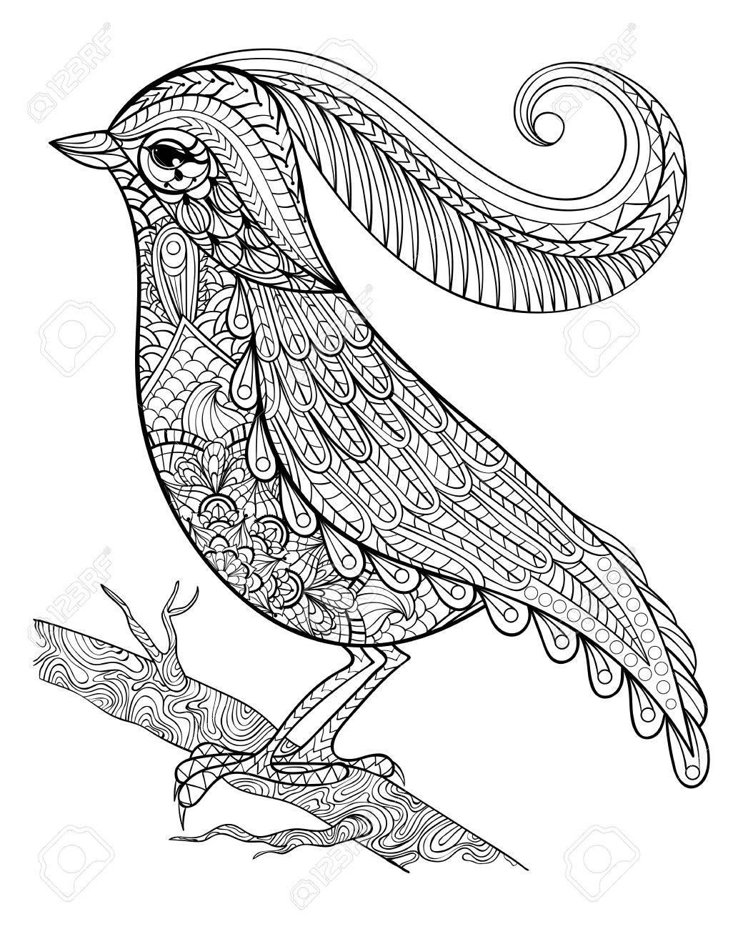 1040x1300 Hand Drawnbeautiful Delicate Bird Sitting On A Branch Framed