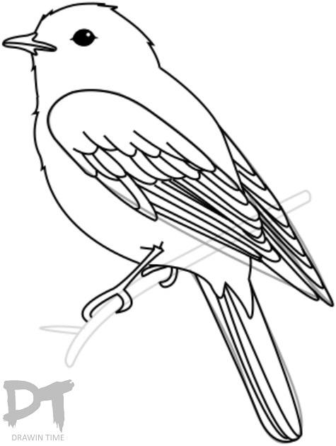 475x630 How To Draw A Bird Drawintime