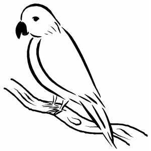 300x300 Sad Bird Sitting On Branch Coloring Page