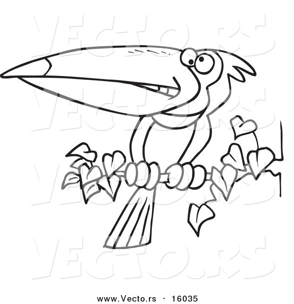 600x620 Vector Of A Cartoon Exotic Toucan Perched On A Branch