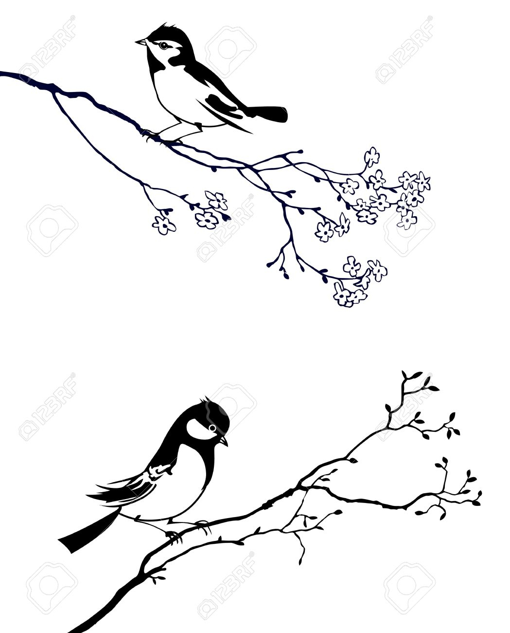 1049x1300 Bird On Tree Drawing Silhouette Of The Bird On Branch Tree Royalty