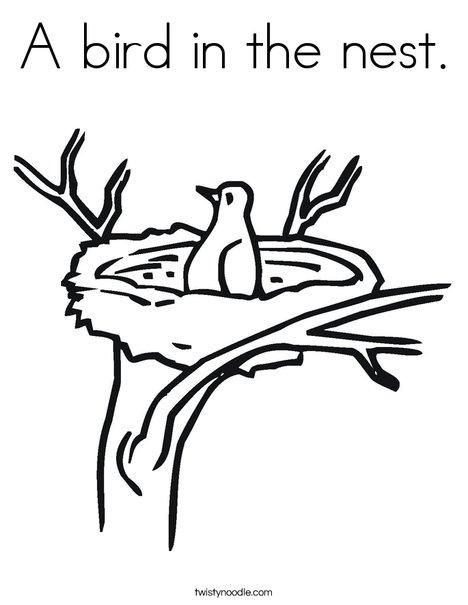 468x605 Drawn Bird Tree Drawing