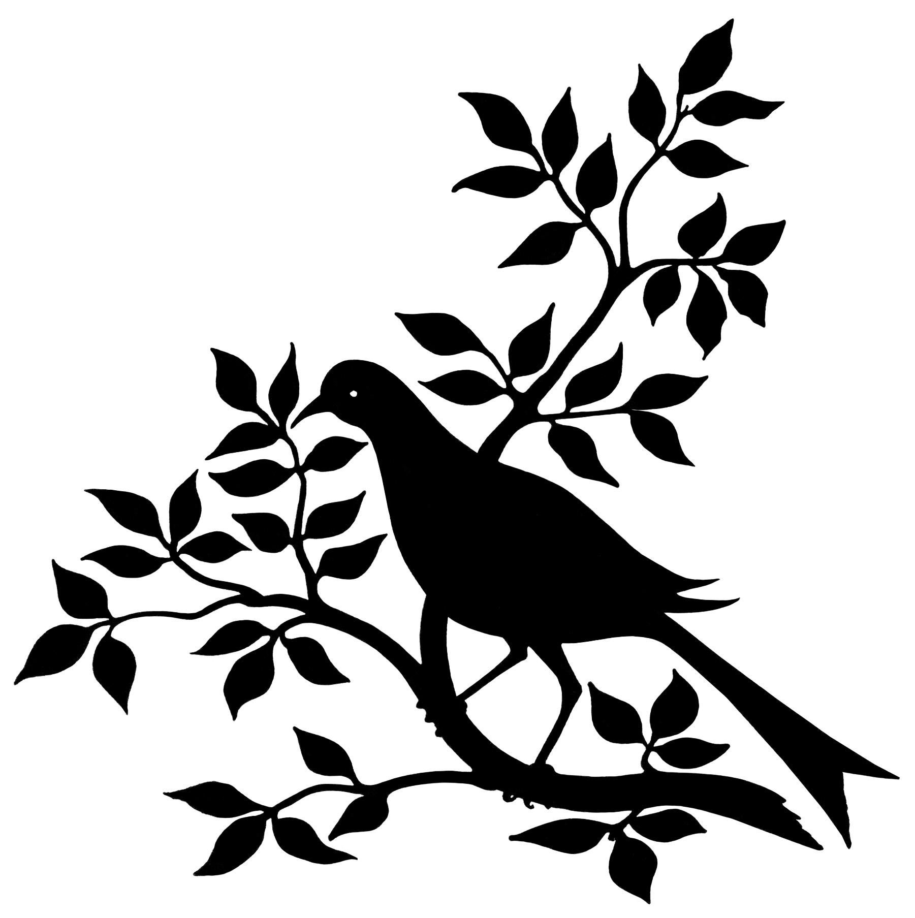 1801x1807 Black Bird On Branch Drawing